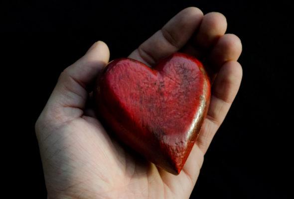 В Беларуси создадут устройство, которое поможет сердцу перекачивать кровь