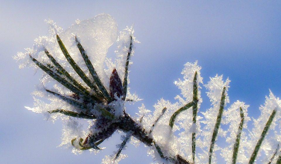 В выходные в Барановичах мороз немного спадет
