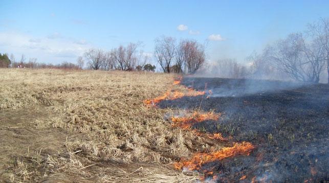 Житель Ляховичского района тушил пожар и попал в больницу