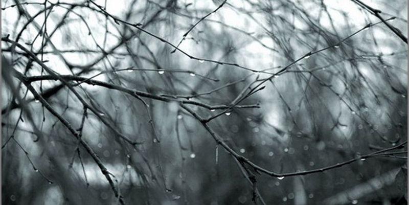 Метеорологи рассказали, какая погода будет в Барановичах на 8 марта