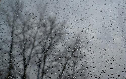 В выходные 18–19 марта в Барановичах будет холодно и дождливо