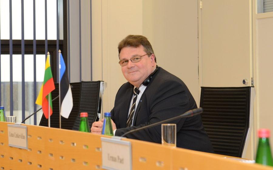 Глава МИД Литвы назвал слова Лукашенко о литовских лагерях боевиков «высосанными из пальца небылицами»