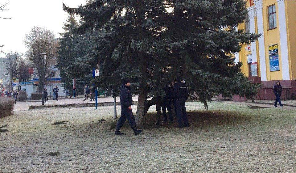 Подробности: что делал мужчина на елке в Барановичах?