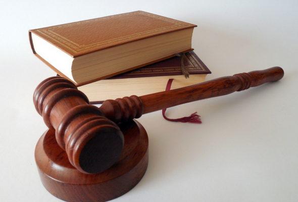 Конституционный суд Беларуси оценил конституционность закона о «тунеядцах»