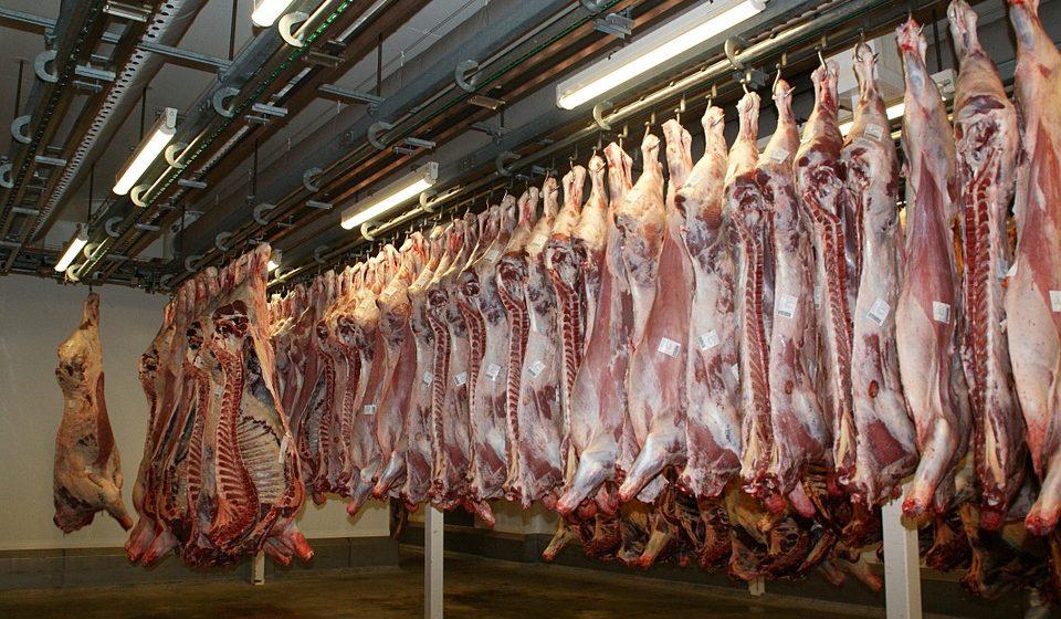В Курской области утилизировали восемь тонн говядины из Барановичей
