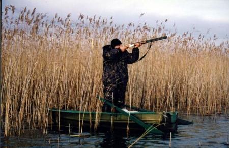 Сезон охоты. Когда и на кого можно выходить с ружьем в Барановичском районе