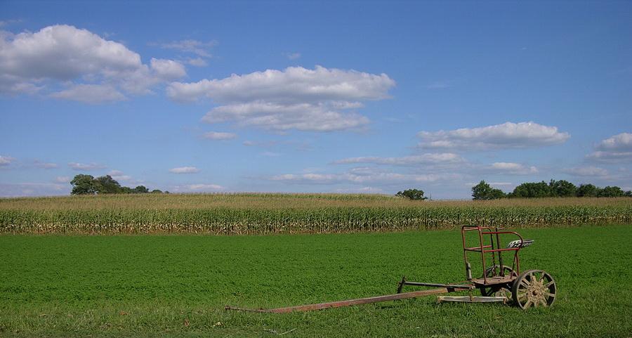 Миллионер из Кении купит колхоз в Минской области
