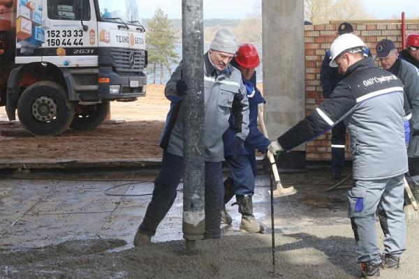 Лукашенко бетонирует пол, Кобяков сажает сосны – как белорусские чиновники трудятся на субботнике