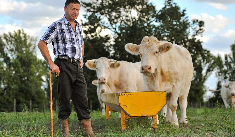 В Ляховичском районе на деньги ЕС будут создавать семейные фермы
