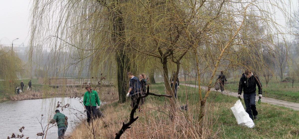 Барановичская молодежь очистит «Гай» от мусора