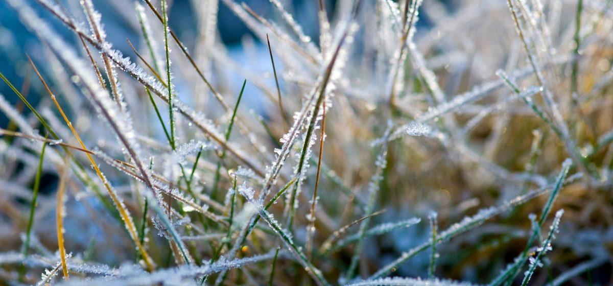 В ближайшие дни в Барановичах ожидаются заморозки