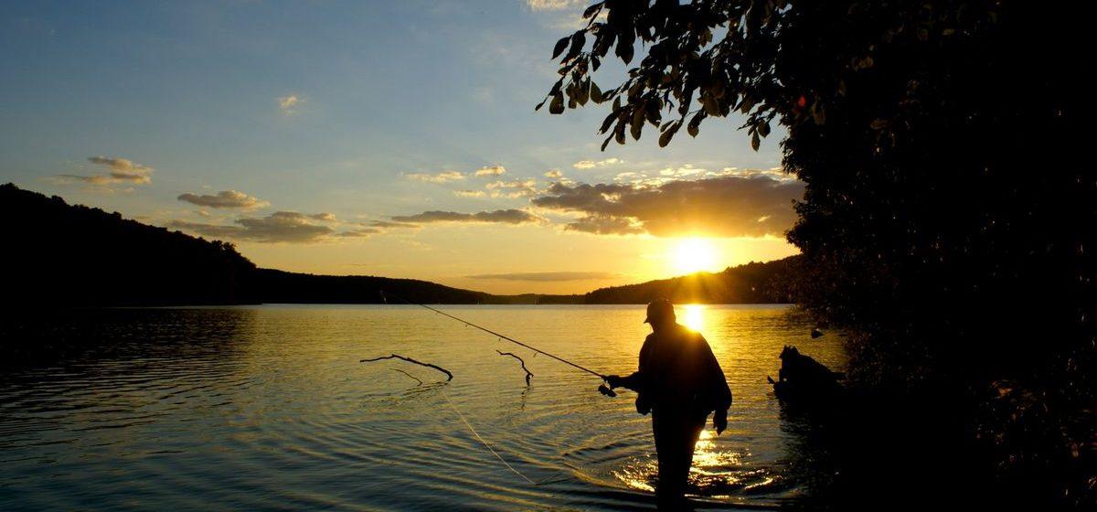 За пойманные в Ляховичском районе две рыбы браконьеру придется заплатить 276 рублей