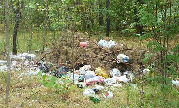 КГК обнаружил рядом с Барановичами несанкционированные свалки