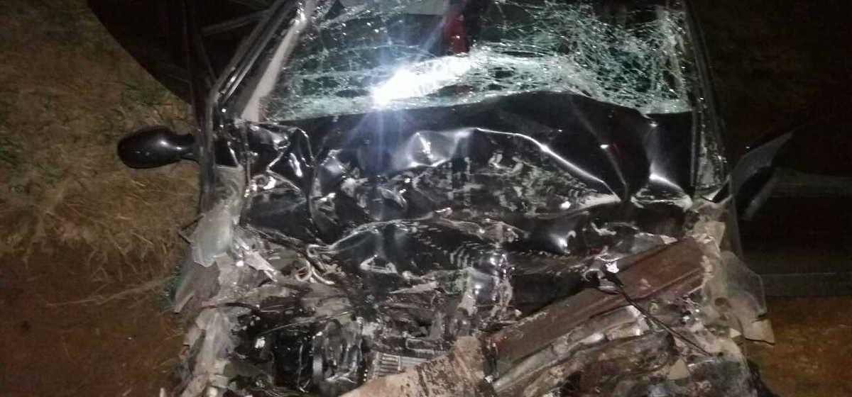 Под Оршей минивэн врезался в лесовоз: водитель легкового автомобиля погиб