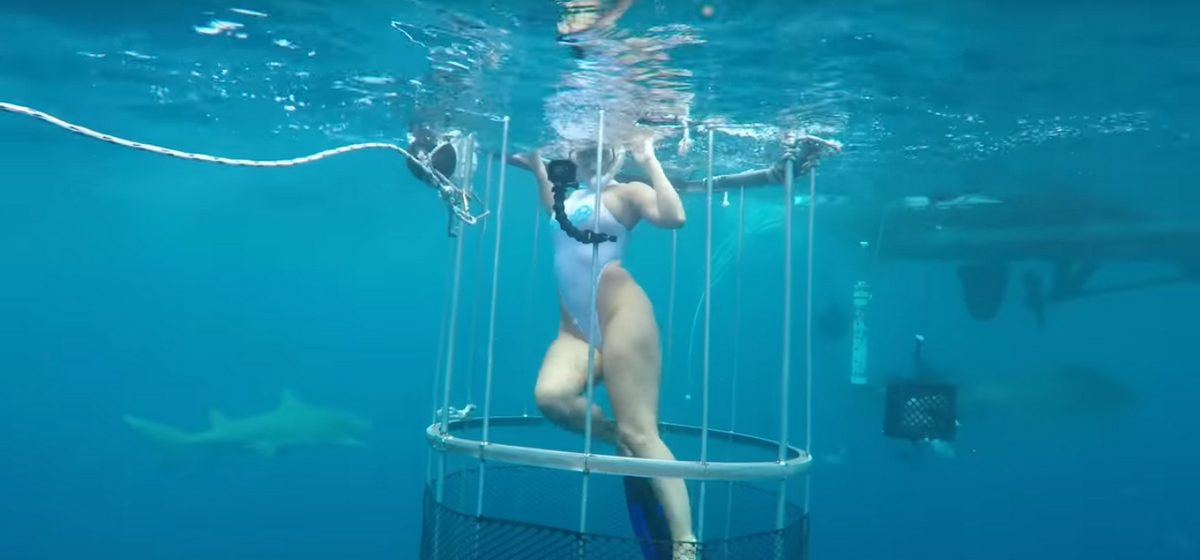 Видеофакт: Американскую порноактрису во время съемок укусила акула