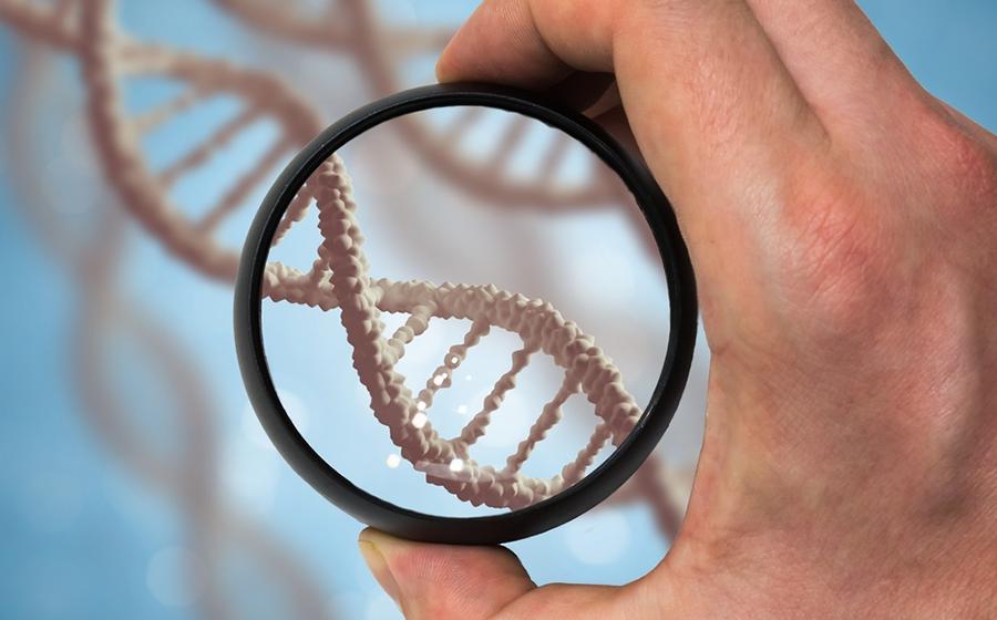 Житель Барановичcкого района, узнав, что трое детей, рожденных его сожительницей, находятся в детдоме, сделал тест ДНК