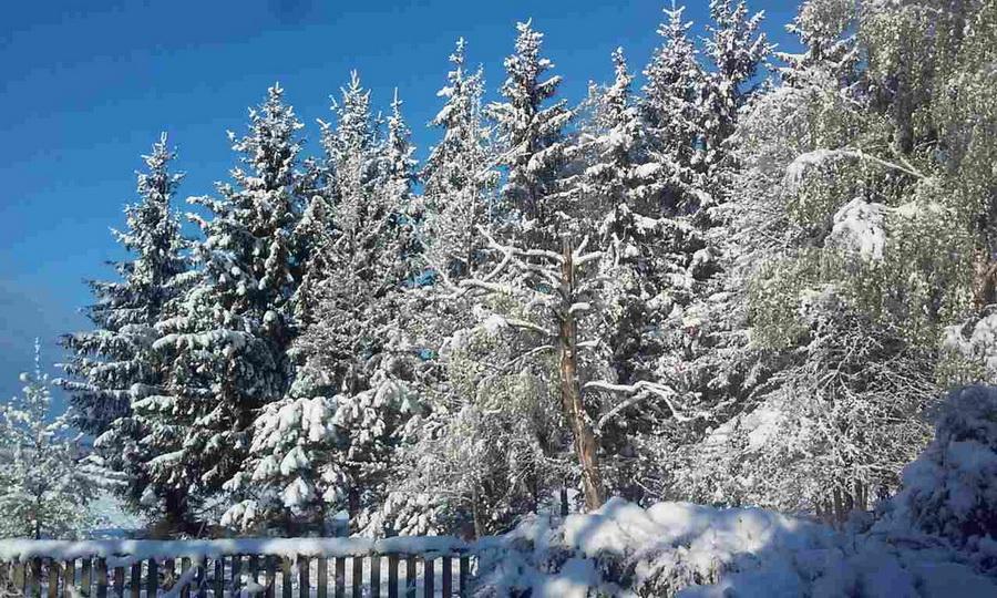«Сакавік-красавік-пухавік»  – майский снег в Беларуси