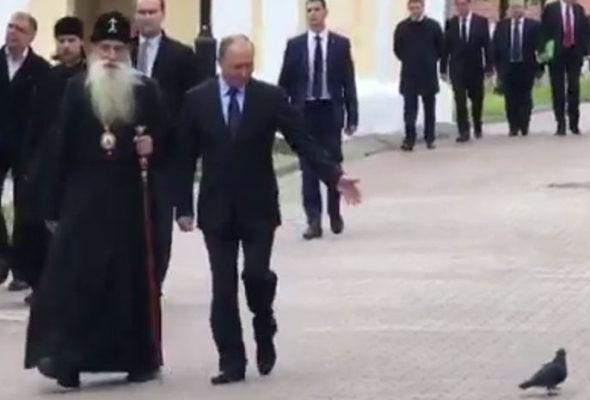 «Здравия желаю!» – Путин приветствует голубя – новый мем интернета