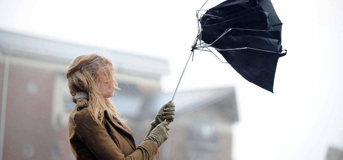 Метеорологи рассказали, насколько сильным будет ветер в Барановичах
