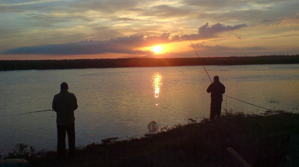 Под Речицей у рыбаков, пока они отдыхали, украли снасти на 500 долларов