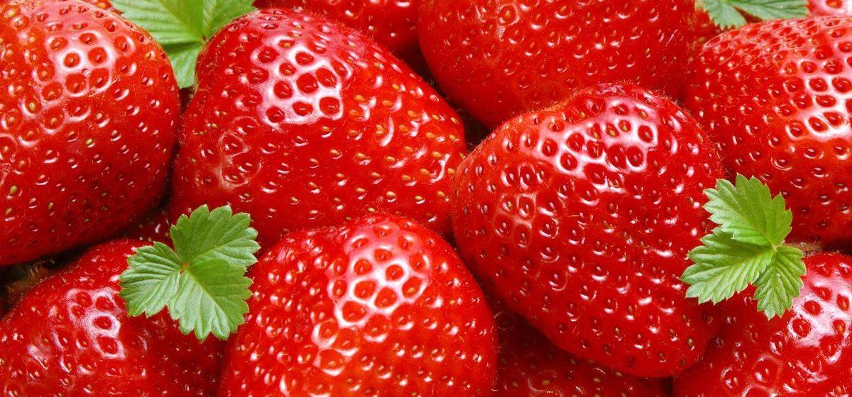 Барановичское райпо: клубнику в основном закупаем в Лунинецком районе
