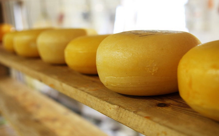 На границе Беларуси и РФ Россельхознадзор задержал 40 тонн белорусского сыра
