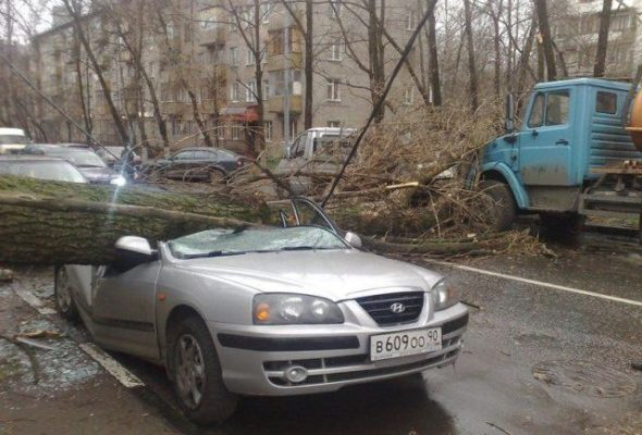 В больнице умер еще один пострадавший от урагана в Москве