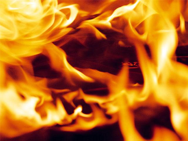 На месте лесного пожара в Березовском районе лесники нашли тело женщины