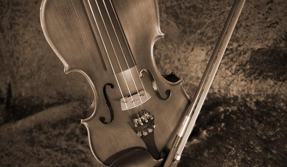 В лесу под Лидой нашли труп 20-летнего парня со скрипкой и смычком