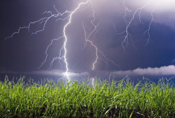 В воскресенье синоптики обещают сильные дожди и грозы
