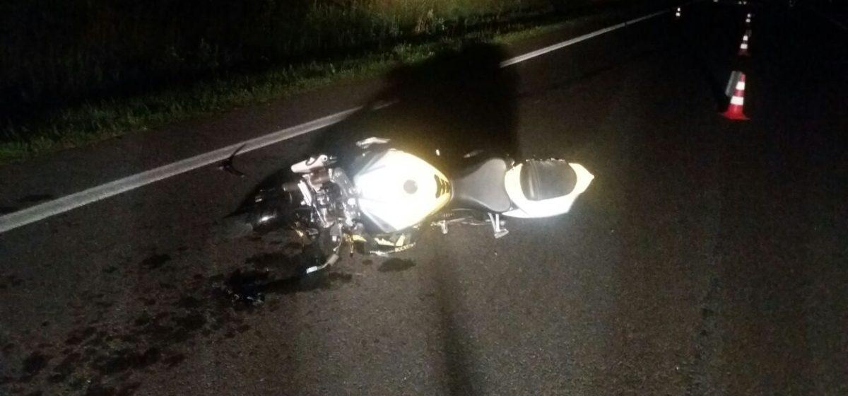 В Пружанском районе мотоциклист налетел на лося и погиб