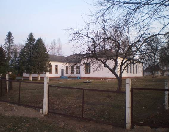 Турбазу в Полонке Барановичского района выставили на продажу за $23 тысячи