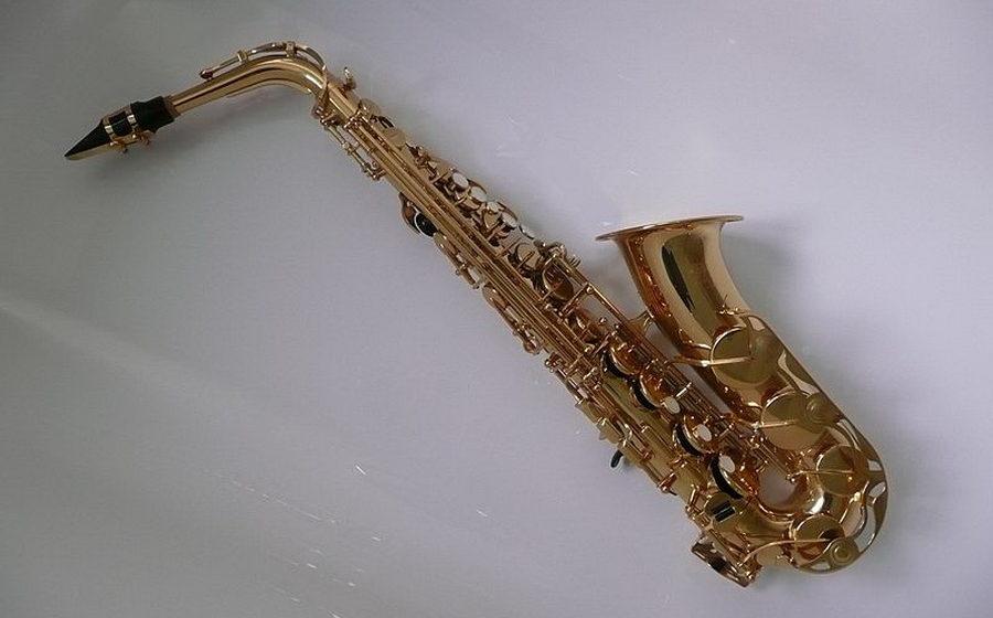 У жителя Барановичей в поезде украли принадлежности к саксофону
