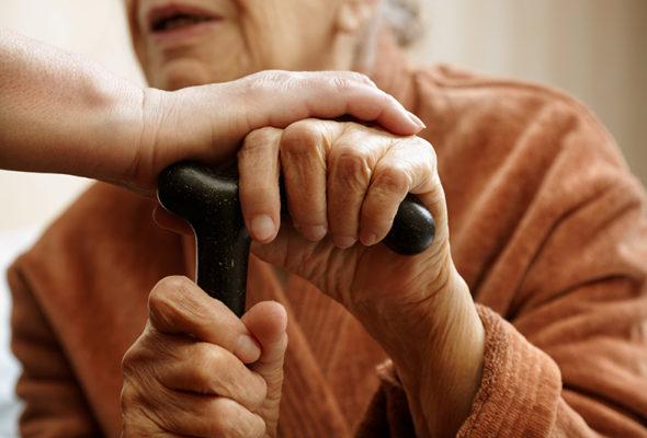 В Барановичском районе две женщины, представившись соцработниками, украли у пенсионерки 750 рублей