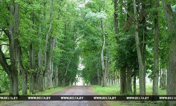 В субботу, 19 августа, на празднике фольклорного искусства состоится экскурсия по усадьбе Рейтанов