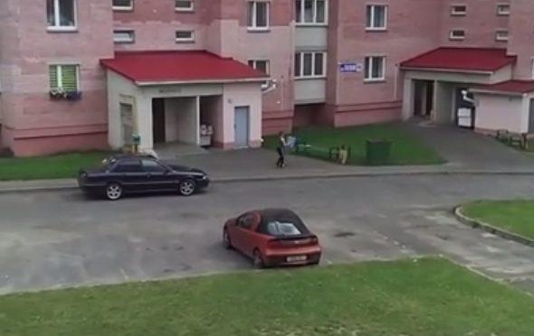 В Барановичах парень необычным способом выбрасывал мусор. Оказалось, что он не мог подойти к баку из-за роя ос (видео)