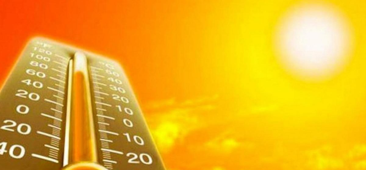 Июль стал самым жарким месяцем на планете за 137 лет метеонаблюдений