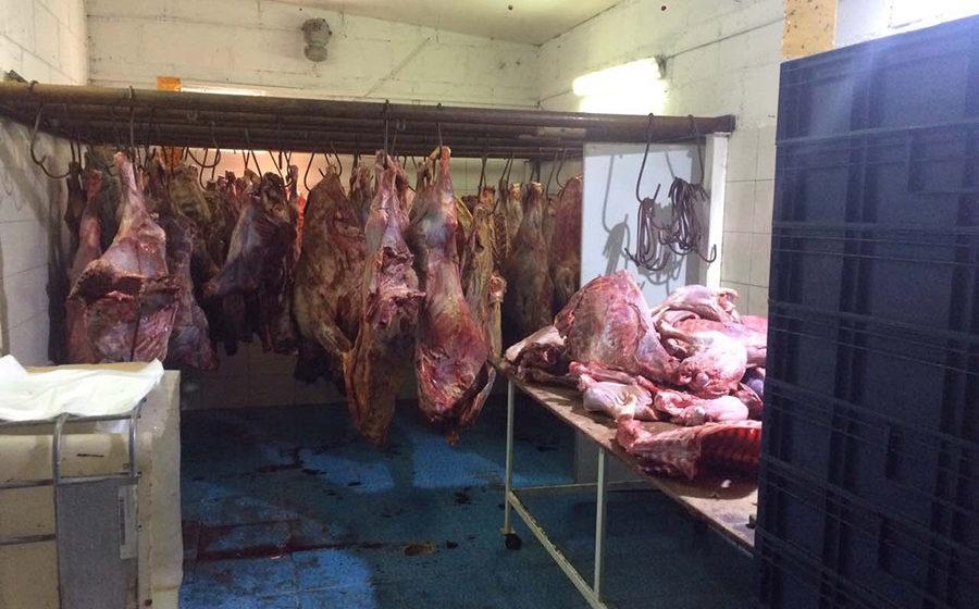 Директор барановичского ООО хранил в гараже почти тонну говяжьих туш