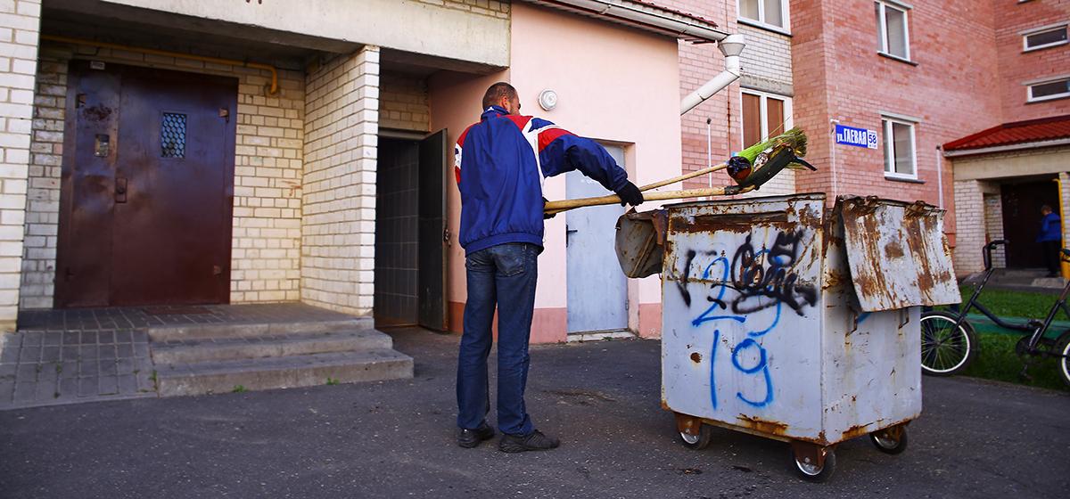 Кто поможет жителям Барановичей избавиться от ос?