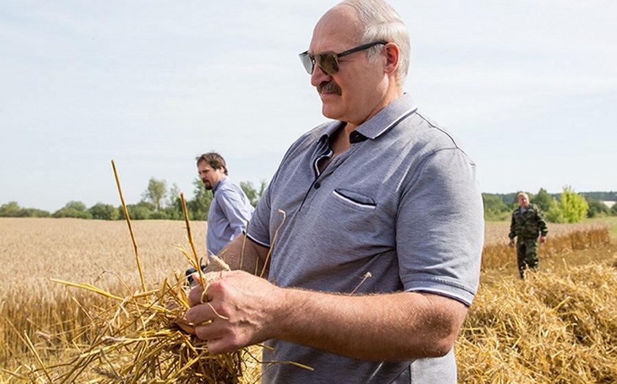 Лукашенко о тунеядцах: «Лопату в зубы – и пошел работать»