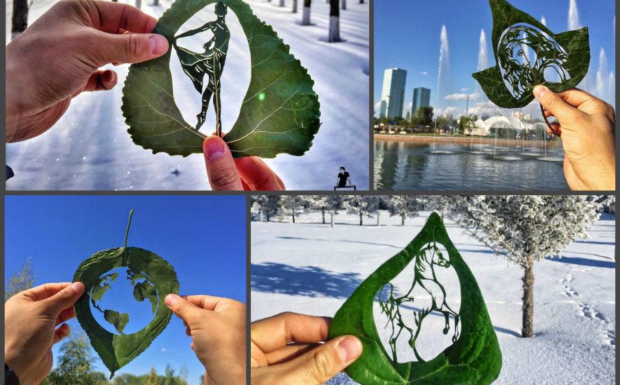 Художник создает необыкновенные картины из древесных листьев