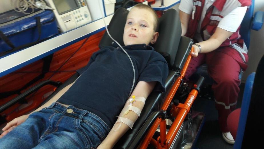 В Минске 10-летнего мальчика укусила гадюка