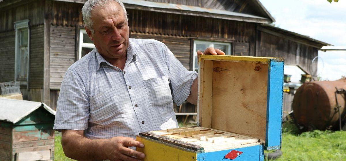 Мой бизнес. Как инженер из Барановичского района стал пчеловодом