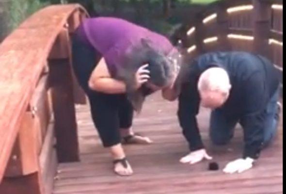 Американец делал девушке предложение и уронил кольцо в реку (видео)