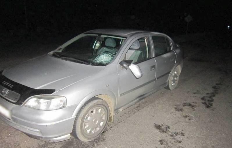 Под Лунинцем машина сбила пьяного пешехода