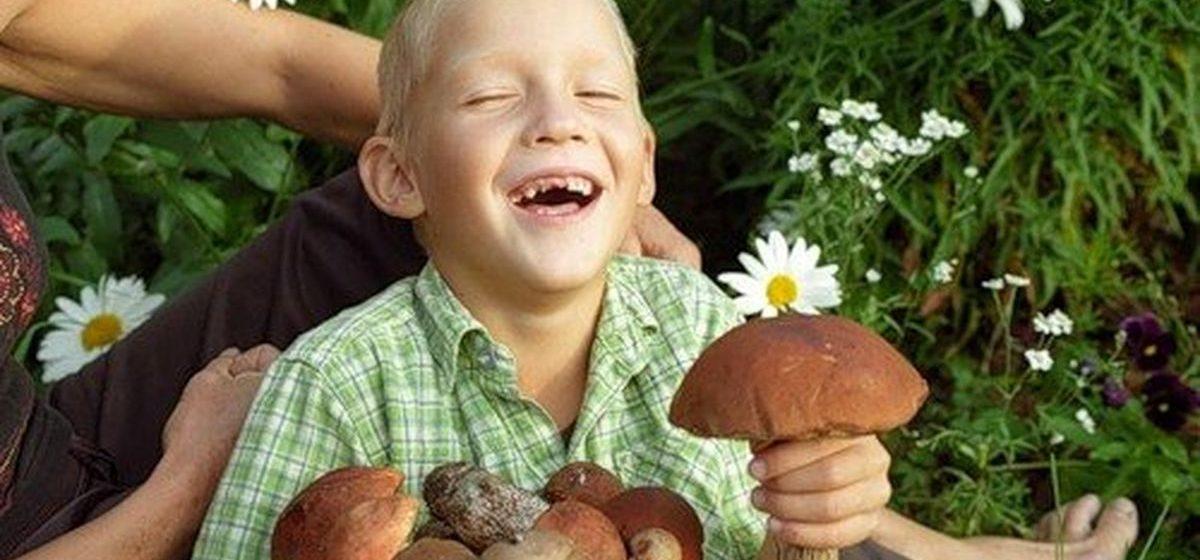 Тест. Cоберите в лесу грибы так, чтобы не отравить свою семью