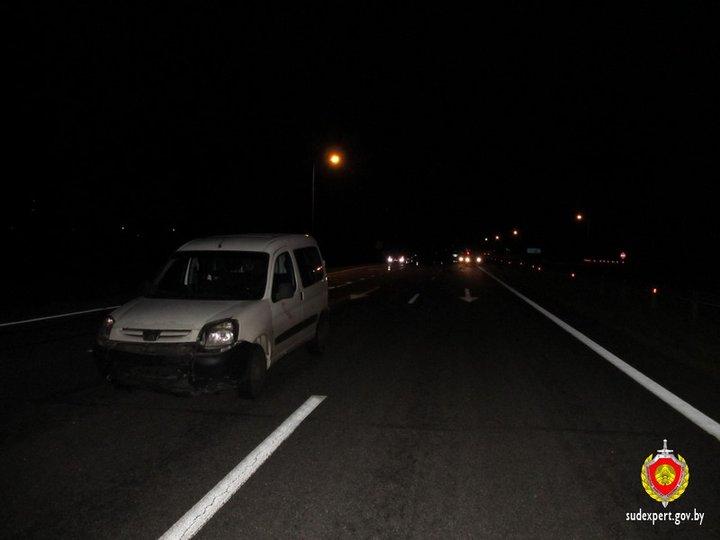 В Несвижском районе на трассе насмерть сбили двух жителей Барановичей