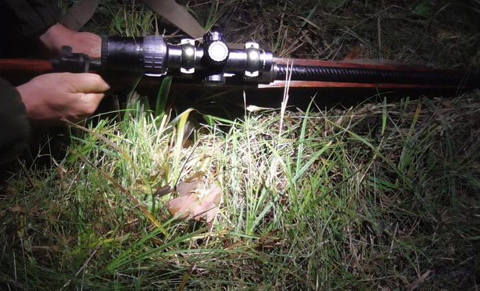 Возле Барановичей задержали браконьера с раритетным маузером