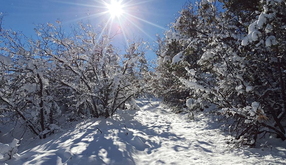 Беларусь ждет самая холодная зима за последние 100 лет