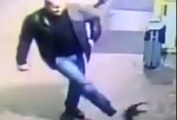 В Полоцке милиционер пнул на улице котенка. За это мужчину уволили (видео)
